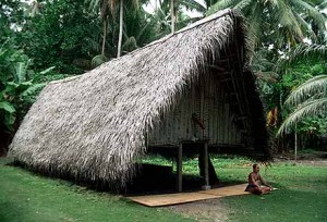 A thatched roof.